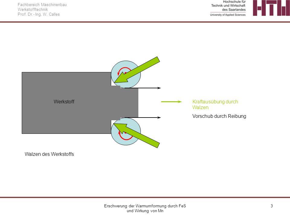 Erschwerung der Warmumformung durch FeS und Wirkung von Mn 3 Fachbereich Maschinenbau Werkstofftechnik Prof. Dr.- Ing. W. Calles Werkstoff Kraftausübu