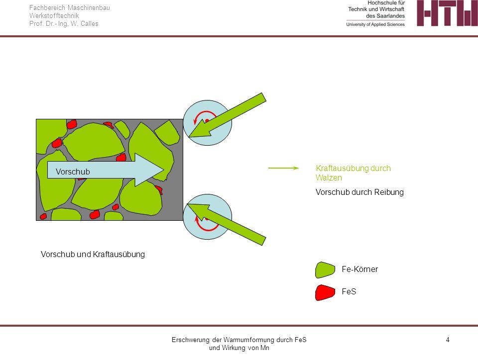 Erschwerung der Warmumformung durch FeS und Wirkung von Mn 4 Fachbereich Maschinenbau Werkstofftechnik Prof. Dr.- Ing. W. Calles Vorschub Fe-Körner Fe