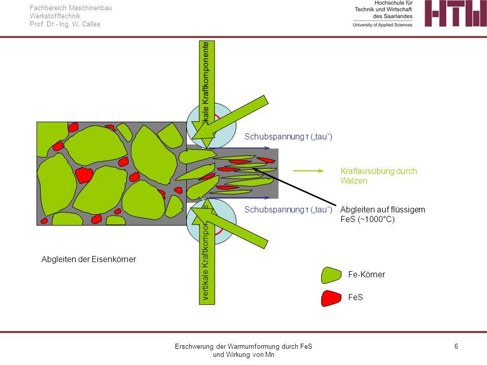 Erschwerung der Warmumformung durch FeS und Wirkung von Mn 7 Fachbereich Maschinenbau Werkstofftechnik Prof.