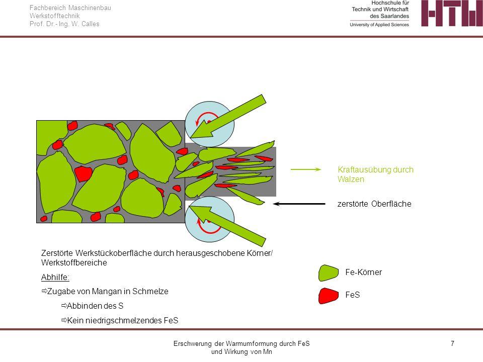 Erschwerung der Warmumformung durch FeS und Wirkung von Mn 7 Fachbereich Maschinenbau Werkstofftechnik Prof. Dr.- Ing. W. Calles zerstörte Oberfläche