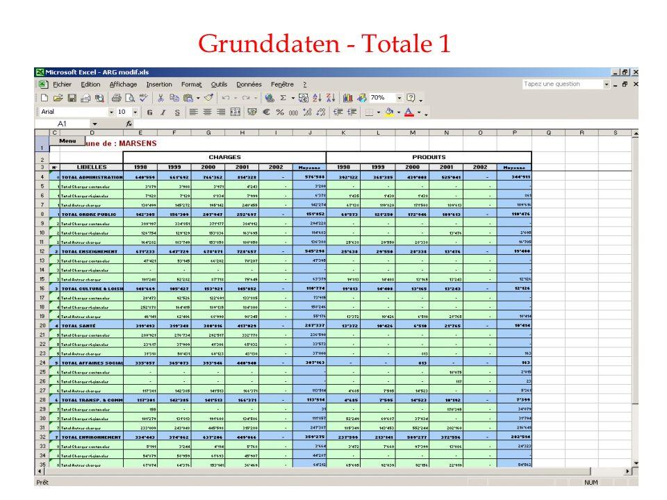 Grunddaten - Totale 1