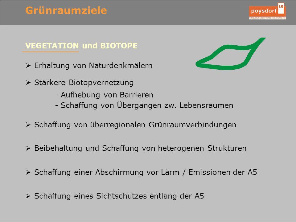 Grünraumziele VEGETATION und BIOTOPE Erhaltung von Naturdenkmälern Stärkere Biotopvernetzung - Aufhebung von Barrieren - Schaffung von Übergängen zw.