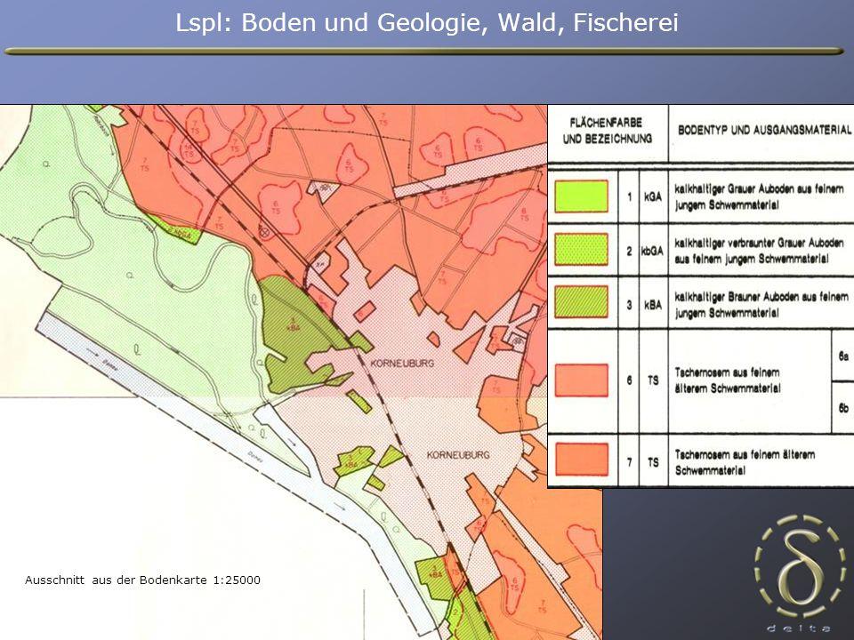 Ausschnitt aus der Bodenkarte 1:25000 Lspl: Boden und Geologie, Wald, Fischerei