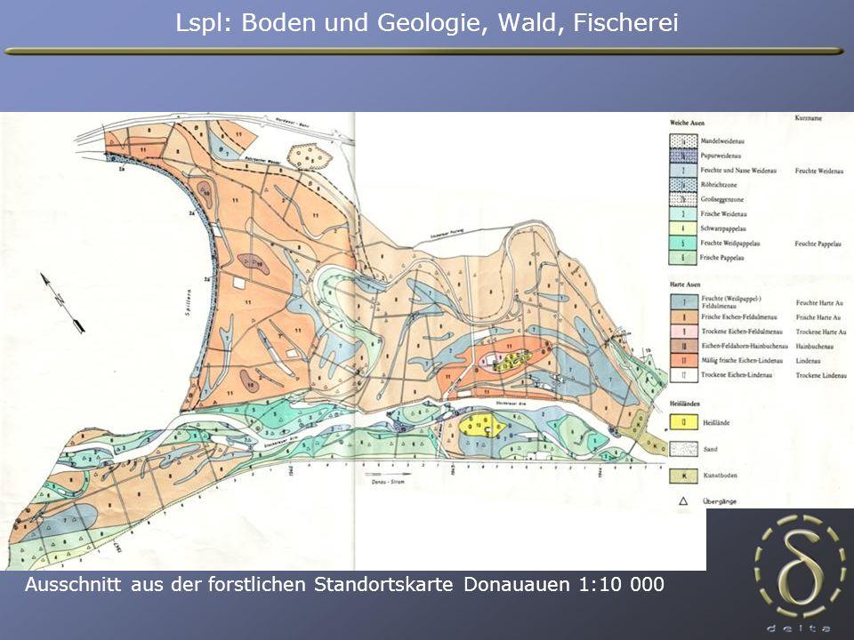 Ausschnitt aus der forstlichen Standortskarte Donauauen 1:10 000 Lspl: Boden und Geologie, Wald, Fischerei