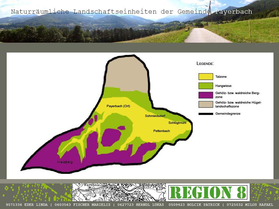 Region Siedlungsentwicklung 9571336 EDER LINDA | 0603563 FISCHER MARIELIS | 0627723 HERNDL LUKAS 0509423 HOLCIK PATRICK | 0725032 MILOS RAFAEL