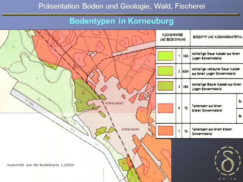 Ausschnitt aus der Bodenkarte 1:25000 Bodentypen in Korneuburg Präsentation Boden und Geologie, Wald, Fischerei