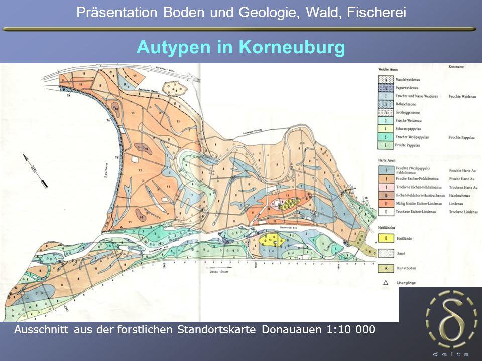 Autypen in Korneuburg Ausschnitt aus der forstlichen Standortskarte Donauauen 1:10 000 Präsentation Boden und Geologie, Wald, Fischerei