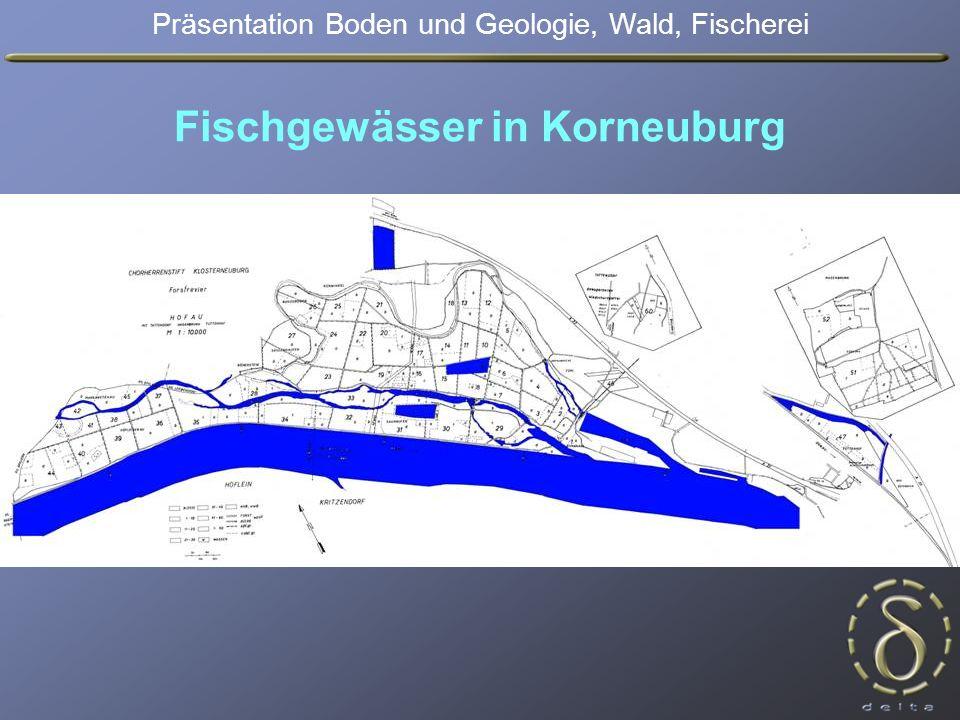 Fischgewässer in Korneuburg Präsentation Boden und Geologie, Wald, Fischerei