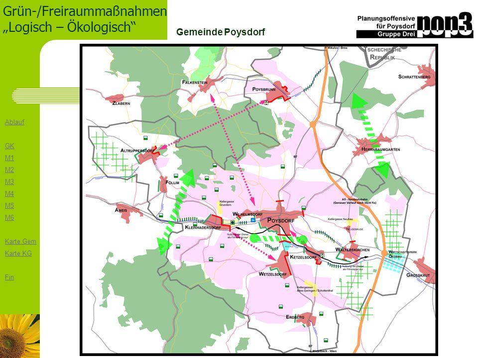 Ablauf GK M1 M2 M3 M4 M5 M6 Karte Gem Karte KG Fin Grün-/Freiraummaßnahmen Logisch – Ökologisch Gemeinde Poysdorf