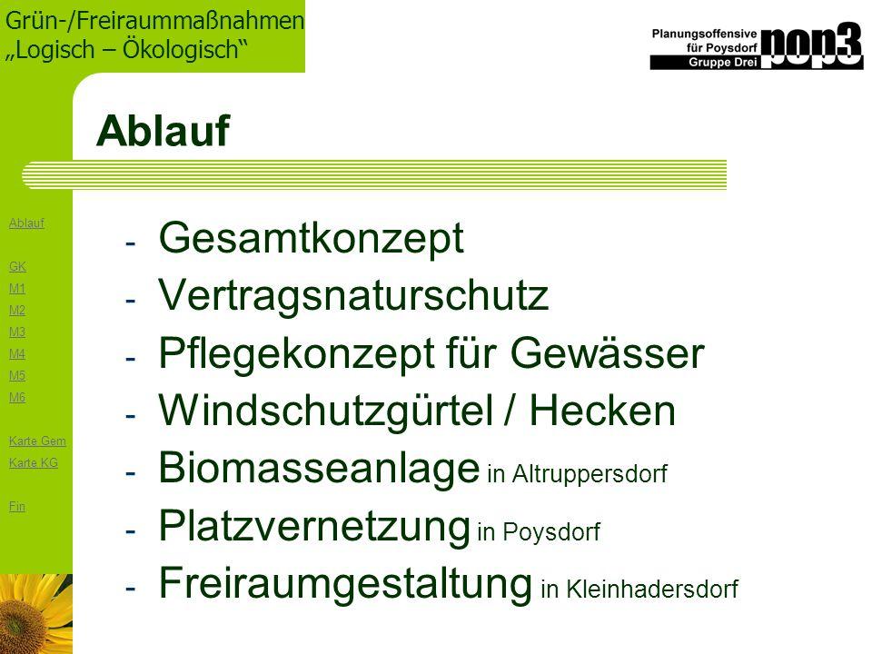Ablauf GK M1 M2 M3 M4 M5 M6 Karte Gem Karte KG Fin Grün-/Freiraummaßnahmen Logisch – Ökologisch Ablauf - Gesamtkonzept - Vertragsnaturschutz - Pflegek