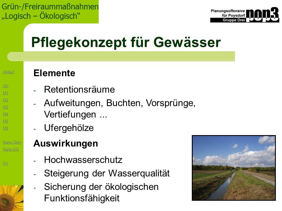 Ablauf GK M1 M2 M3 M4 M5 M6 Karte Gem Karte KG Fin Grün-/Freiraummaßnahmen Logisch – Ökologisch Pflegekonzept für Gewässer - Retentionsräume - Aufweit