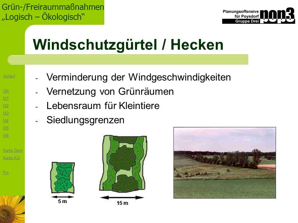 Ablauf GK M1 M2 M3 M4 M5 M6 Karte Gem Karte KG Fin Grün-/Freiraummaßnahmen Logisch – Ökologisch Windschutzgürtel / Hecken - Verminderung der Windgesch