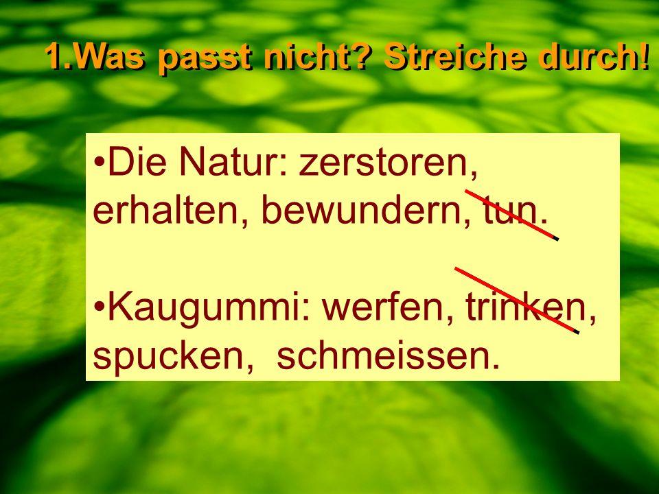 Die Natur: zerstoren, erhalten, bewundern, tun. Kaugummi: werfen, trinken, spucken, schmeissen. 1.Was passt nicht? Streiche durch!
