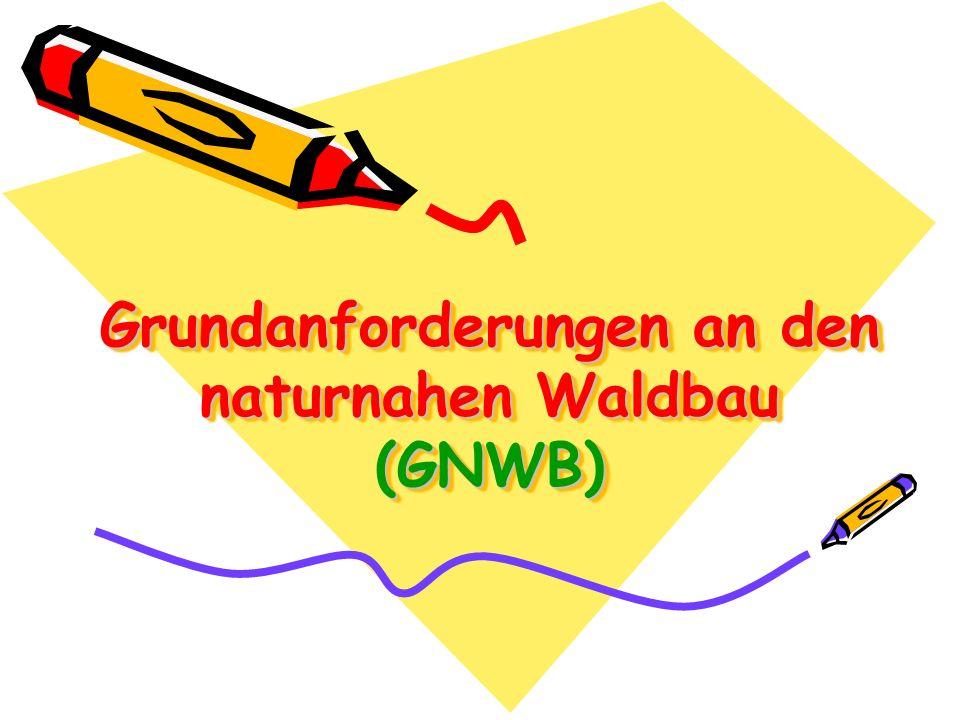 Grundanforderungen an den naturnahen Waldbau (GNWB)