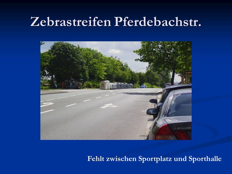 Zebrastreifen Pferdebachstr. Fehlt zwischen Sportplatz und Sporthalle