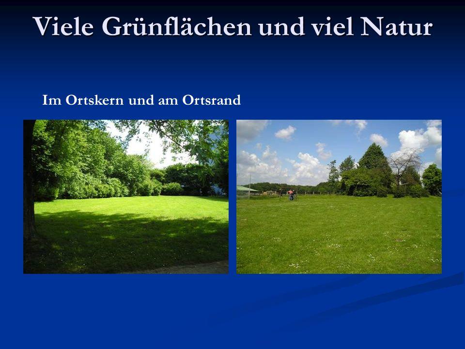Viele Grünflächen und viel Natur Im Ortskern und am Ortsrand