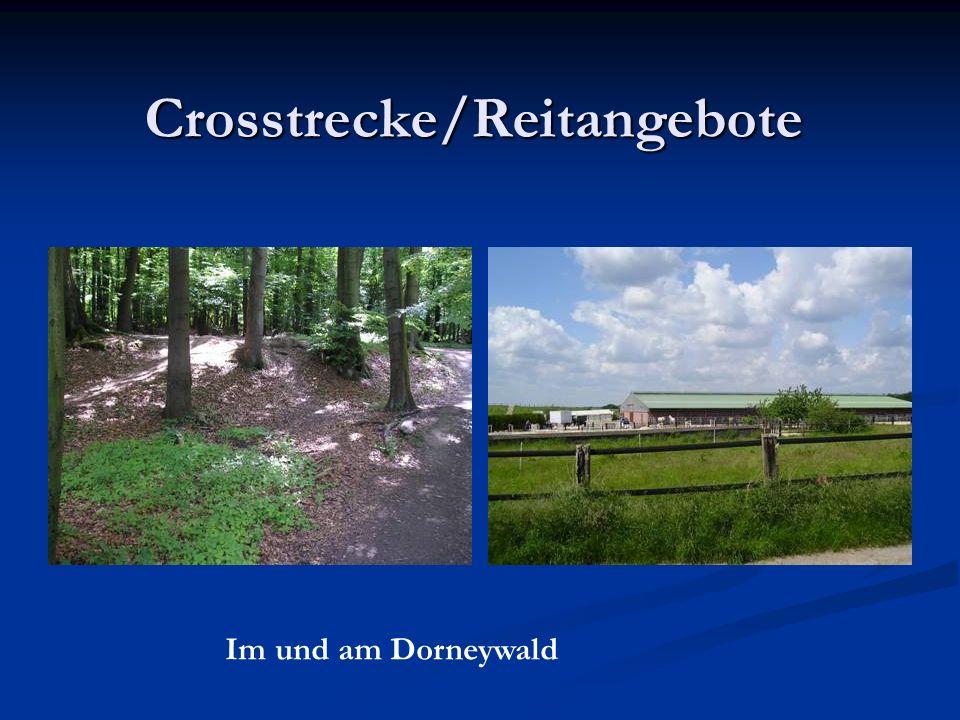 Crosstrecke/Reitangebote Im und am Dorneywald