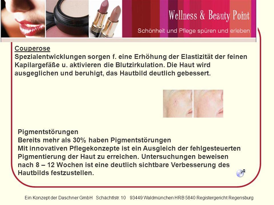 Ein Konzept der Daschner GmbH Schächtlstr. 10 93449 Waldmünchen HRB 5840 Registergericht Regensburg Für jedes Problem die richtige Lösung Rechnen Sie