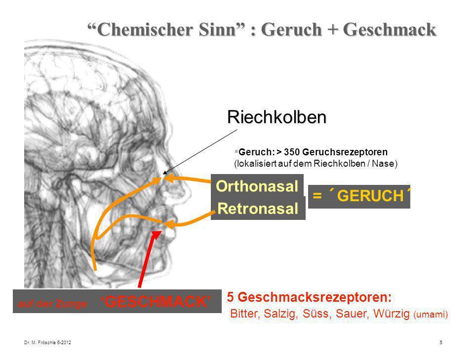 Dr. M. Fröschle 6-20125 Orthonasal = ´GERUCH´ Chemischer Sinn : Geruch + Geschmack Riechkolben Geruch: > 350 Geruchsrezeptoren (lokalisiert auf dem Ri