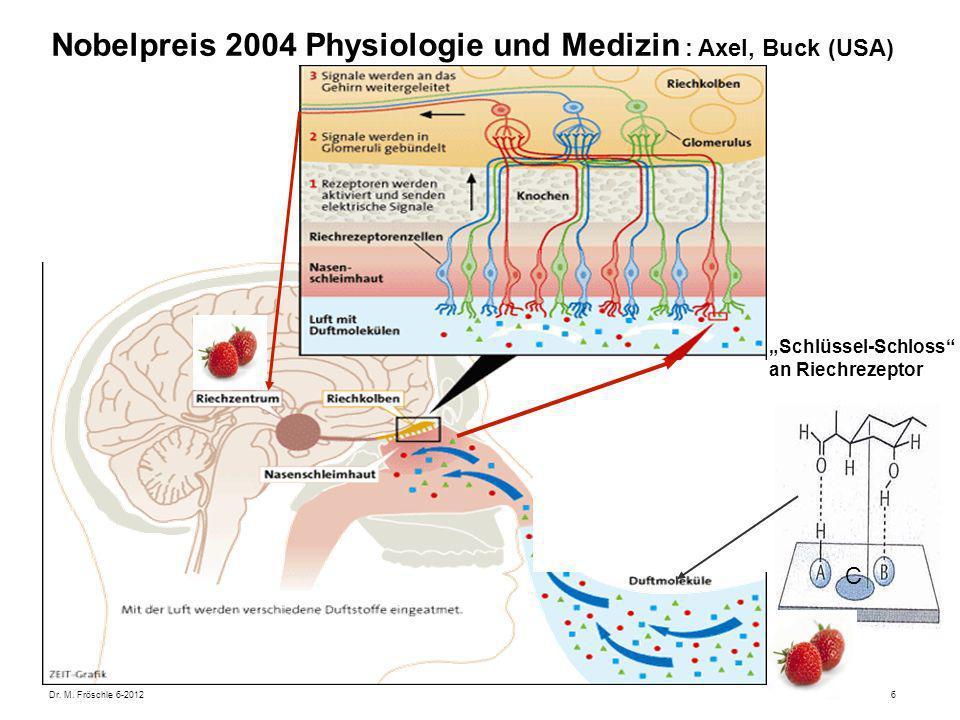 Dr. M. Fröschle 6-20126 Nobelpreis 2004 Physiologie und Medizin : Axel, Buck (USA) Schlüssel-Schloss an Riechrezeptor C