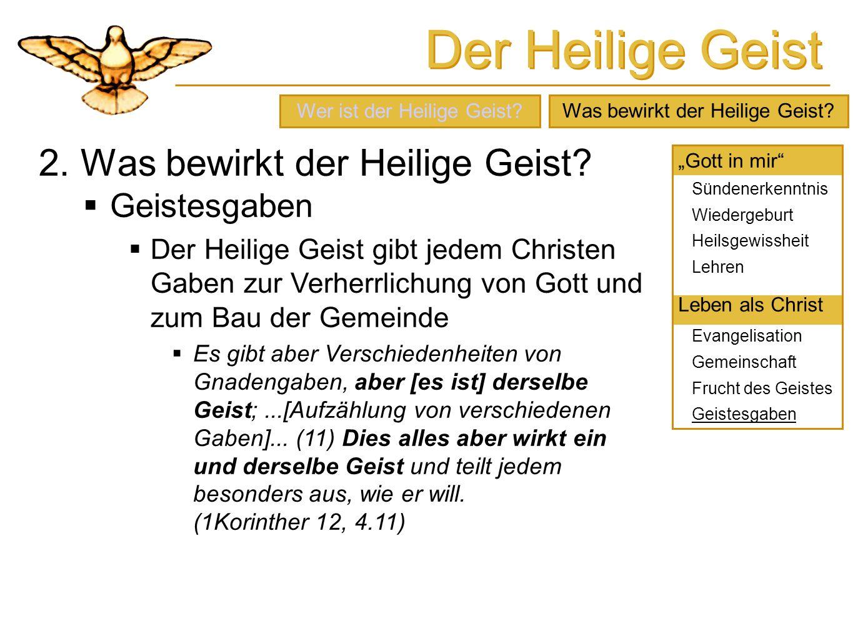 Der Heilige Geist 2. Was bewirkt der Heilige Geist? Geistesgaben Der Heilige Geist gibt jedem Christen Gaben zur Verherrlichung von Gott und zum Bau d