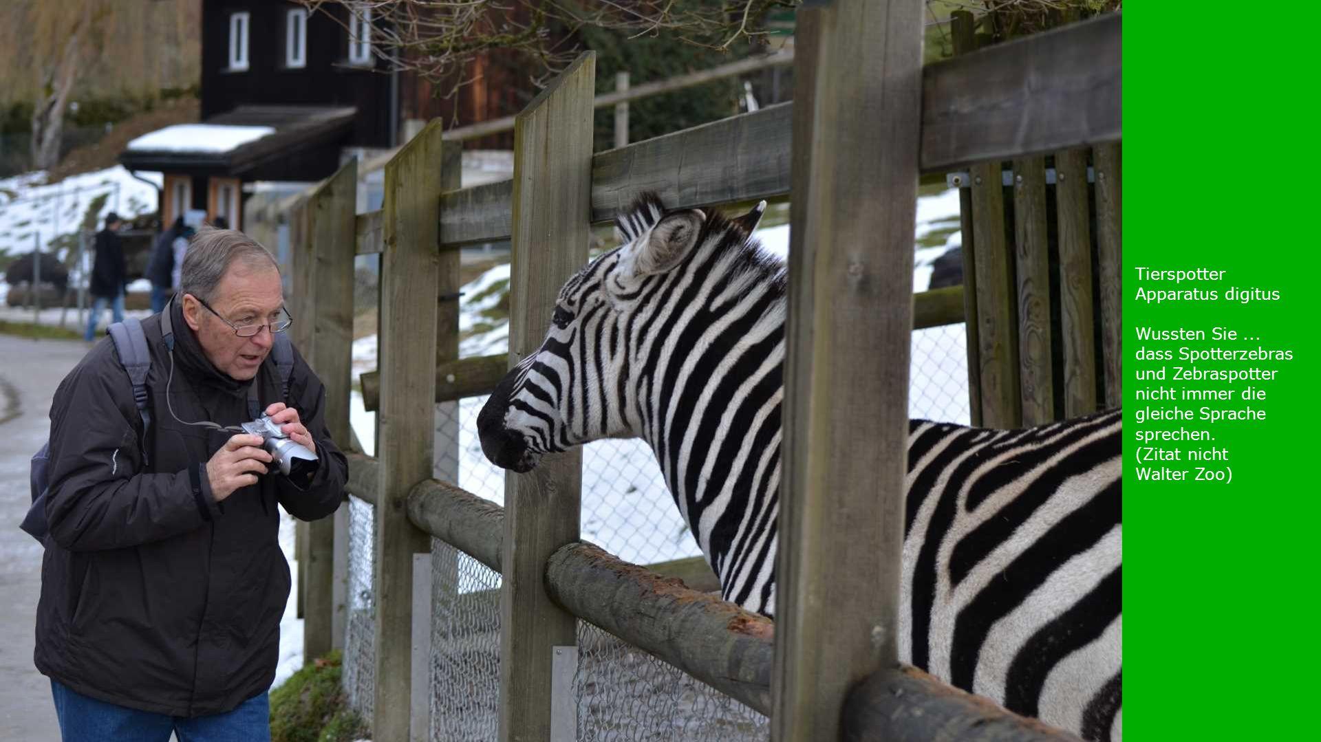 Tierspotter Apparatus digitus Wussten Sie... dass Spotterzebras und Zebraspotter nicht immer die gleiche Sprache sprechen. (Zitat nicht Walter Zoo)