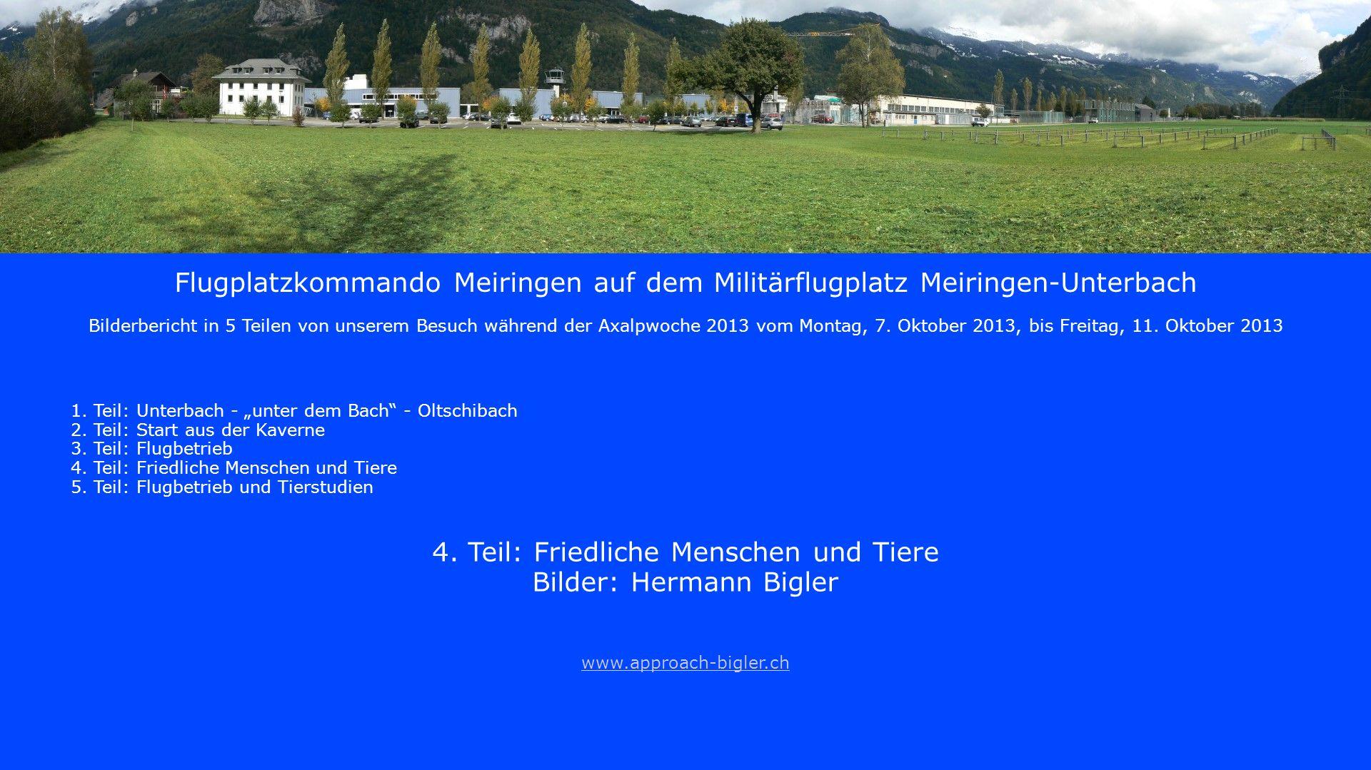 Direkt neben der modernen Air Base Meiringen ein historischer Bunker, getarnt als Alphütte.