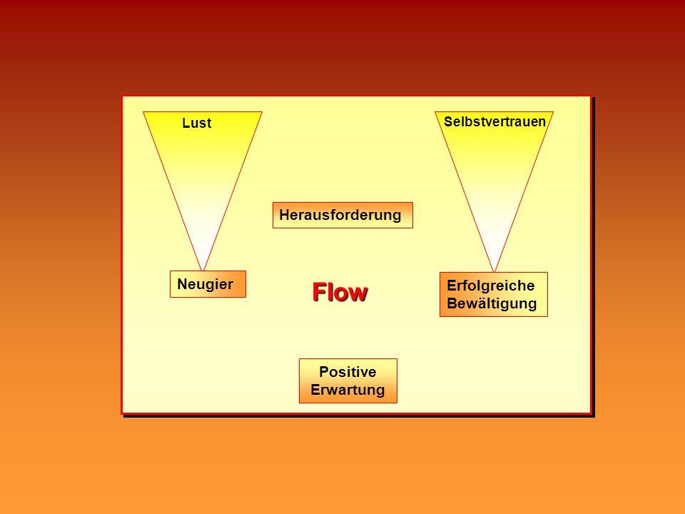Flow Herausforderung Lust Neugier Positive Erwartung Selbstvertrauen Erfolgreiche Bewältigung