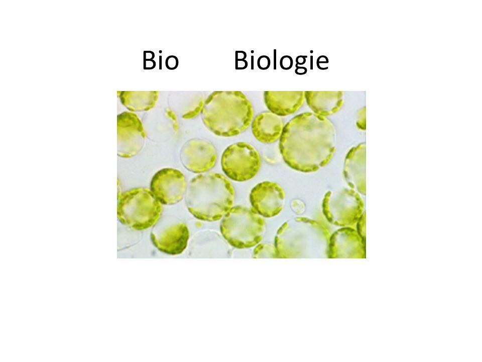 Bio Biologie