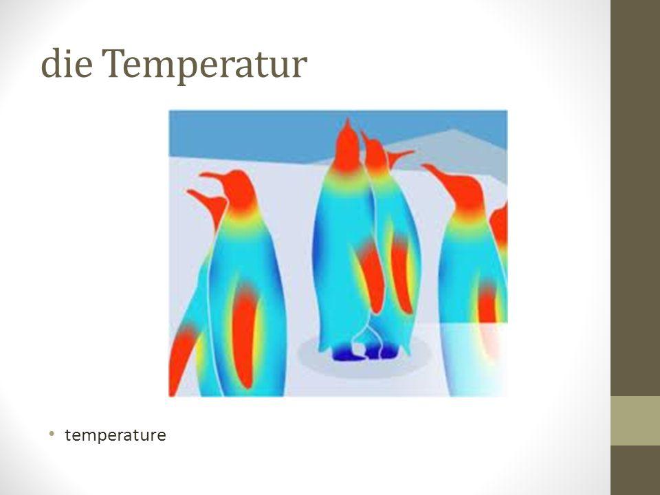 die Temperatur temperature