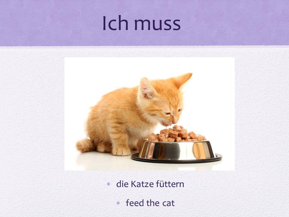 Ich muss die Katze füttern feed the cat