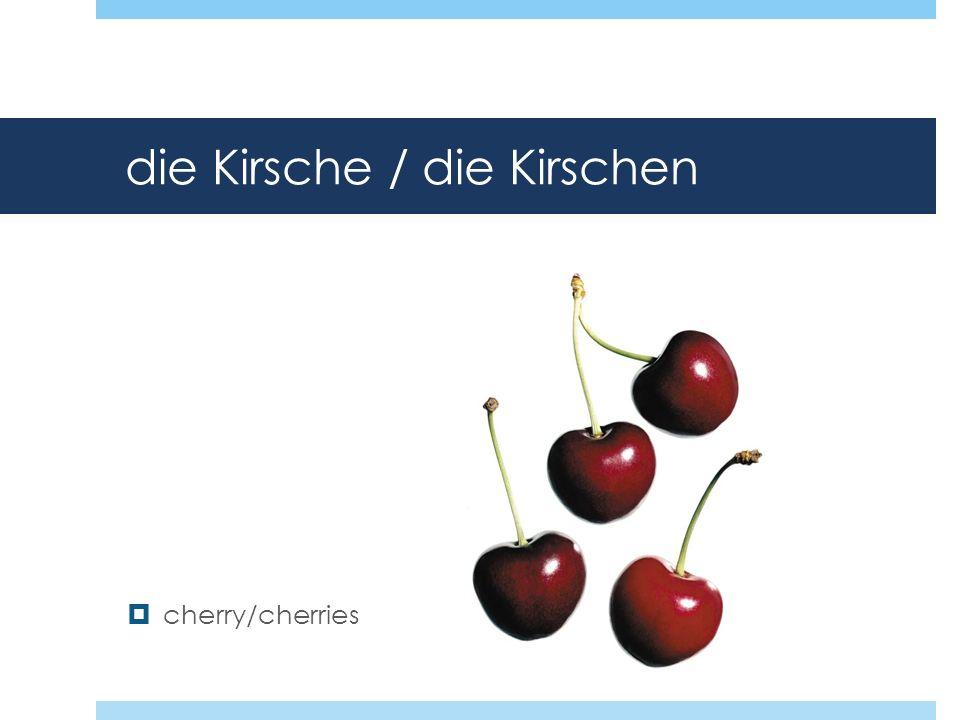 die Kirsche / die Kirschen cherry/cherries