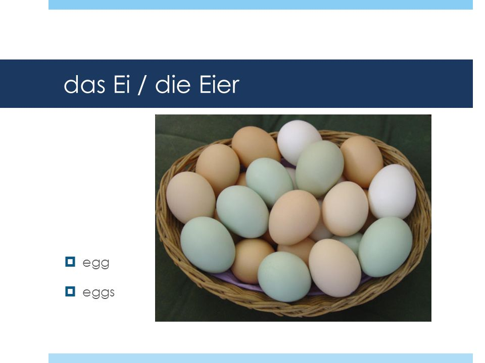 das Ei / die Eier egg eggs
