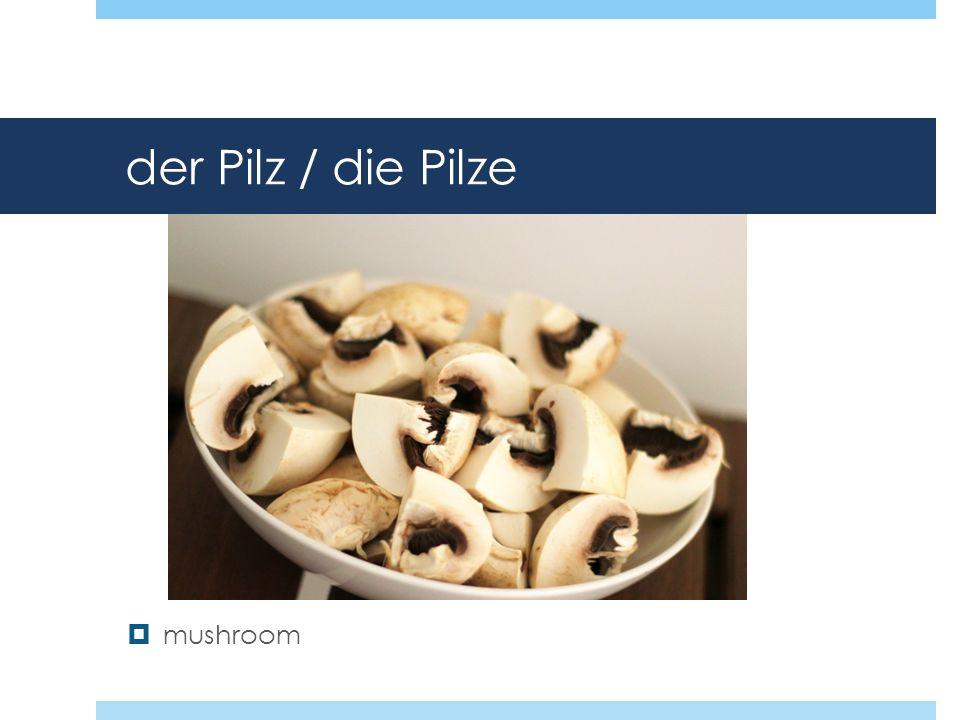 der Pilz / die Pilze mushroom
