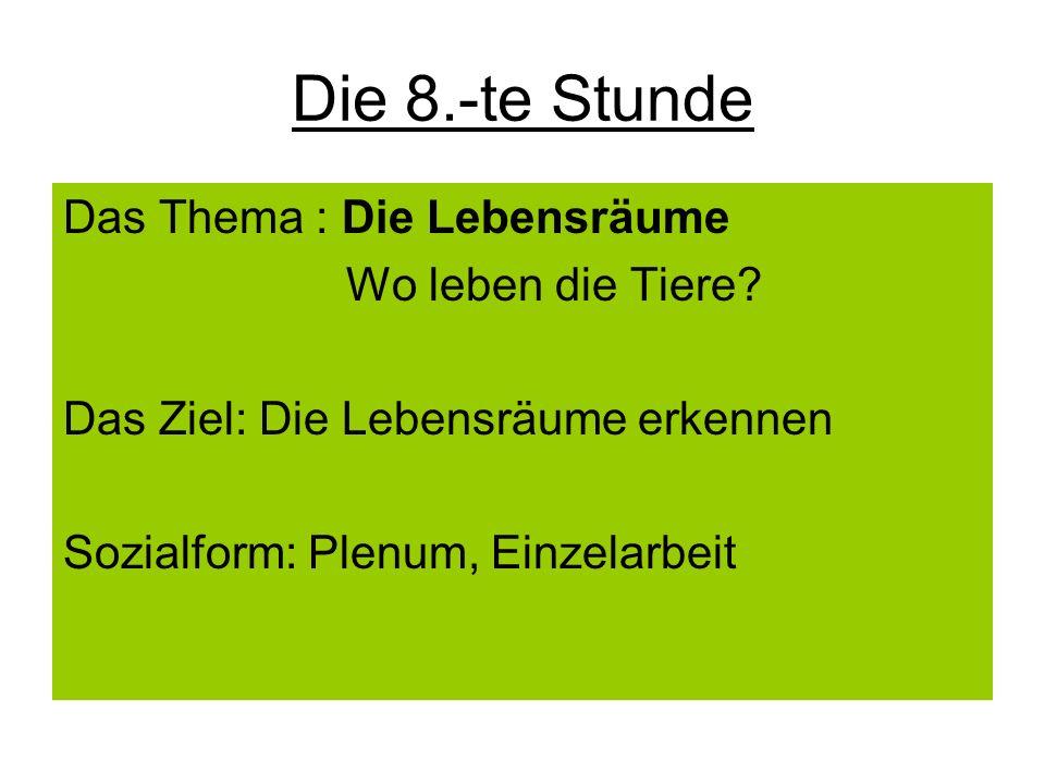 Die 8.-te Stunde Das Thema : Die Lebensräume Wo leben die Tiere? Das Ziel: Die Lebensräume erkennen Sozialform: Plenum, Einzelarbeit