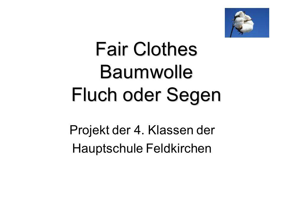 Fair Clothes Baumwolle Fluch oder Segen Projekt der 4. Klassen der Hauptschule Feldkirchen