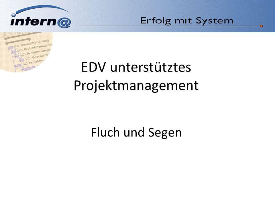EDV unterstütztes Projektmanagement Fluch und Segen