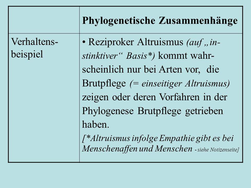 Phylogenetische Zusammenhänge Verhaltens- beispiel Reziproker Altruismus (auf in- stinktiver Basis*) kommt wahr- scheinlich nur bei Arten vor, die Brutpflege (= einseitiger Altruismus) zeigen oder deren Vorfahren in der Phylogenese Brutpflege getrieben haben.