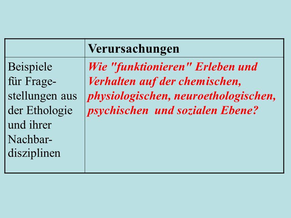 Verursachungen Beispiele für Frage- stellungen aus der Ethologie und ihrer Nachbar- disziplinen Wie
