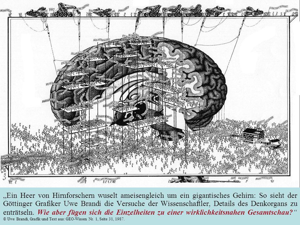 Ein Heer von Hirnforschern wuselt ameisengleich um ein gigantisches Gehirn: So sieht der Göttinger Grafiker Uwe Brandi die Versuche der Wissenschaftler, Details des Denkorgans zu enträtseln.