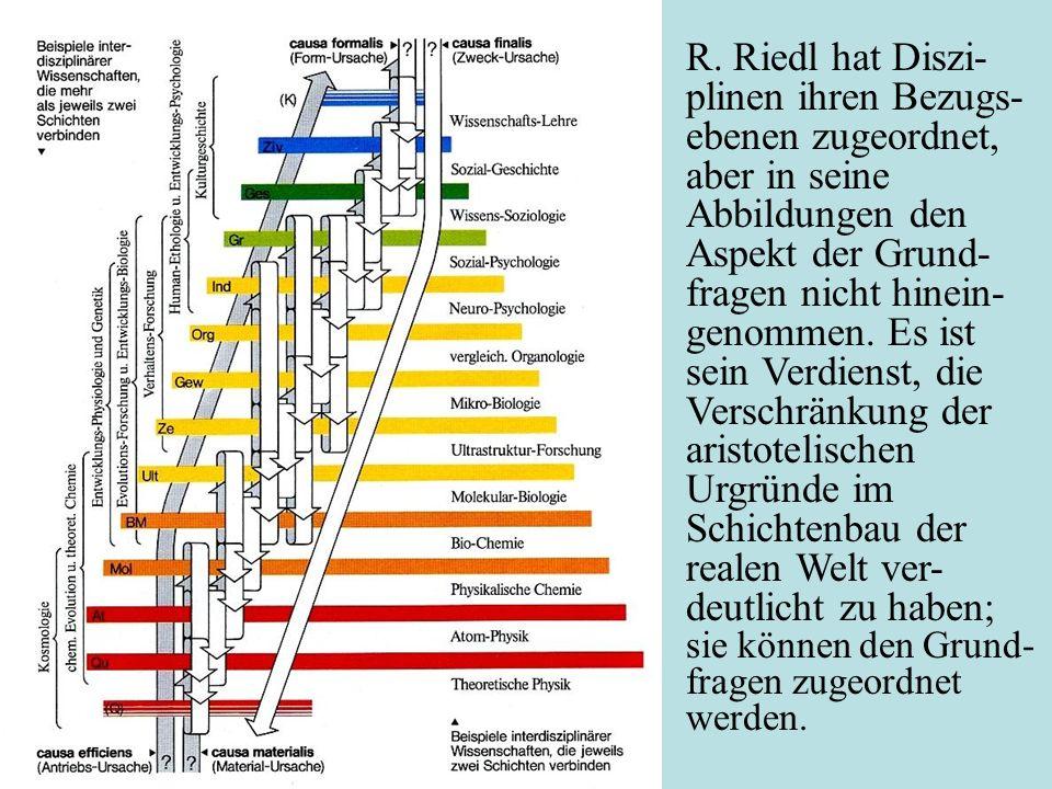 R. Riedl hat Diszi- plinen ihren Bezugs- ebenen zugeordnet, aber in seine Abbildungen den Aspekt der Grund- fragen nicht hinein- genommen. Es ist sein