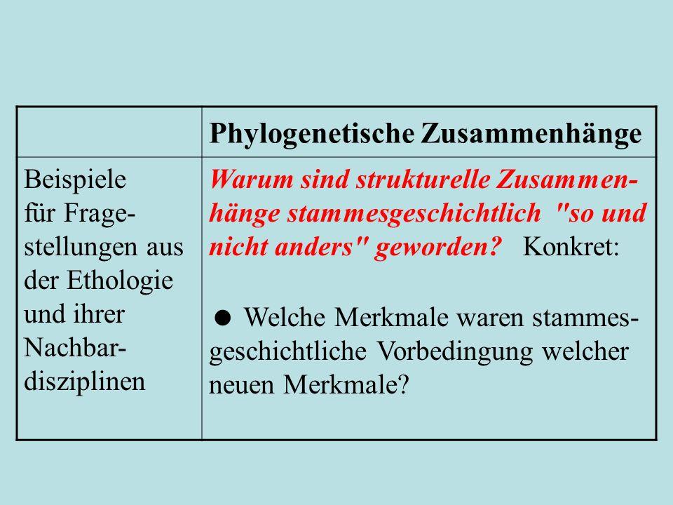 Phylogenetische Zusammenhänge Beispiele für Frage- stellungen aus der Ethologie und ihrer Nachbar- disziplinen Warum sind strukturelle Zusammen- hänge