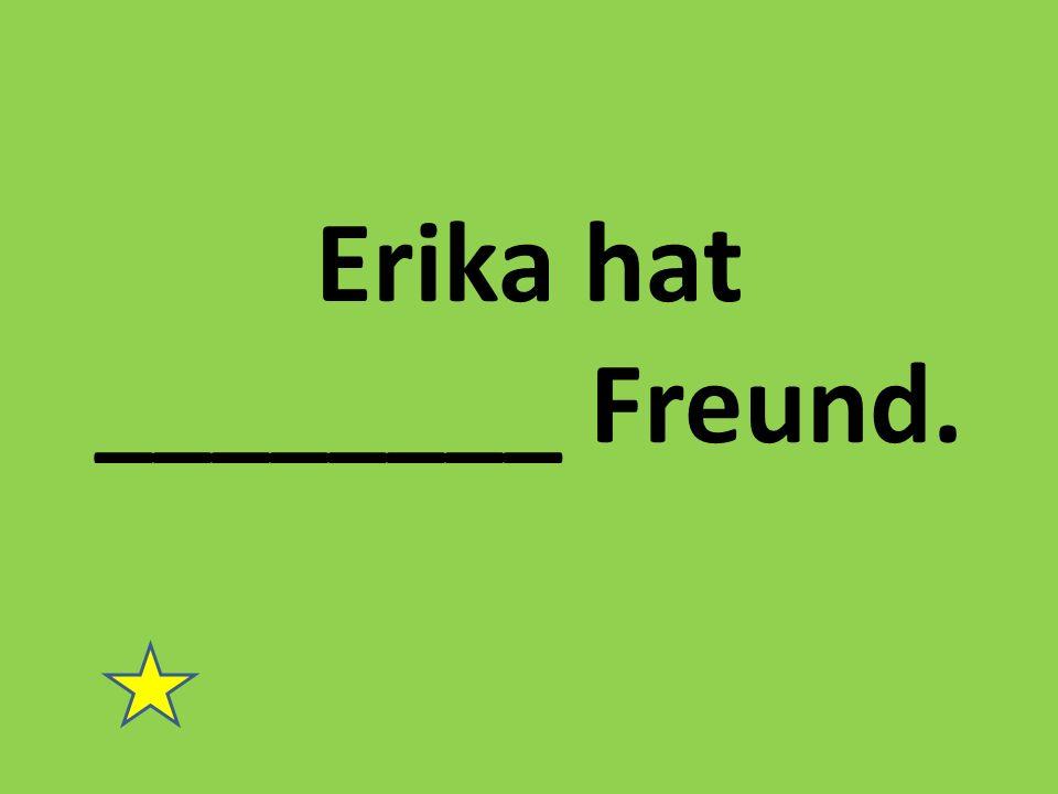 Erika hat ________ Freund.