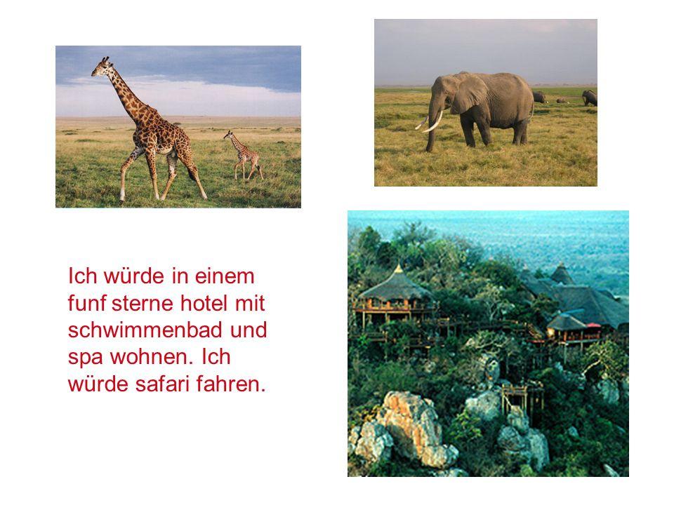 Ich würde in einem funf sterne hotel mit schwimmenbad und spa wohnen. Ich würde safari fahren.