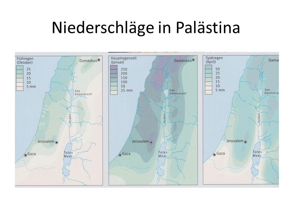 Die Herrscher Palästinas zu Jesu Zeiten (ca.4 v.Chr.