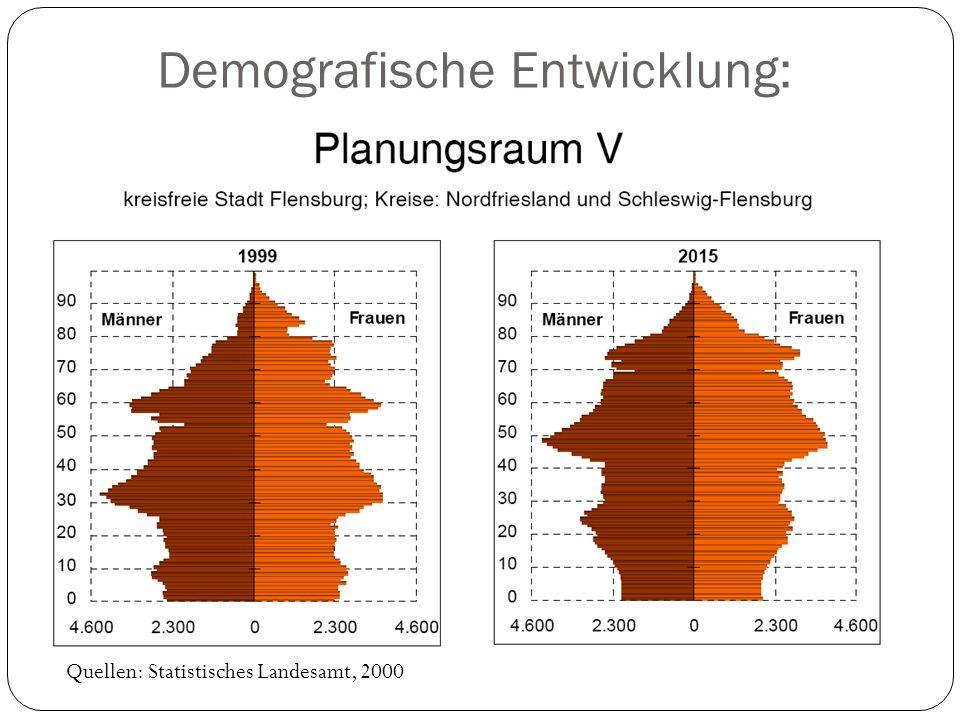 Demografische Entwicklung: Quellen: Statistisches Landesamt, 2000