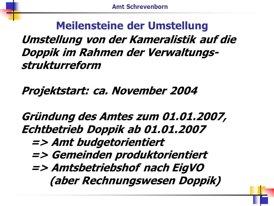 Umstellung von der Kameralistik auf die Doppik im Rahmen der Verwaltungs- strukturreform Projektstart: ca. November 2004 Gründung des Amtes zum 01.01.