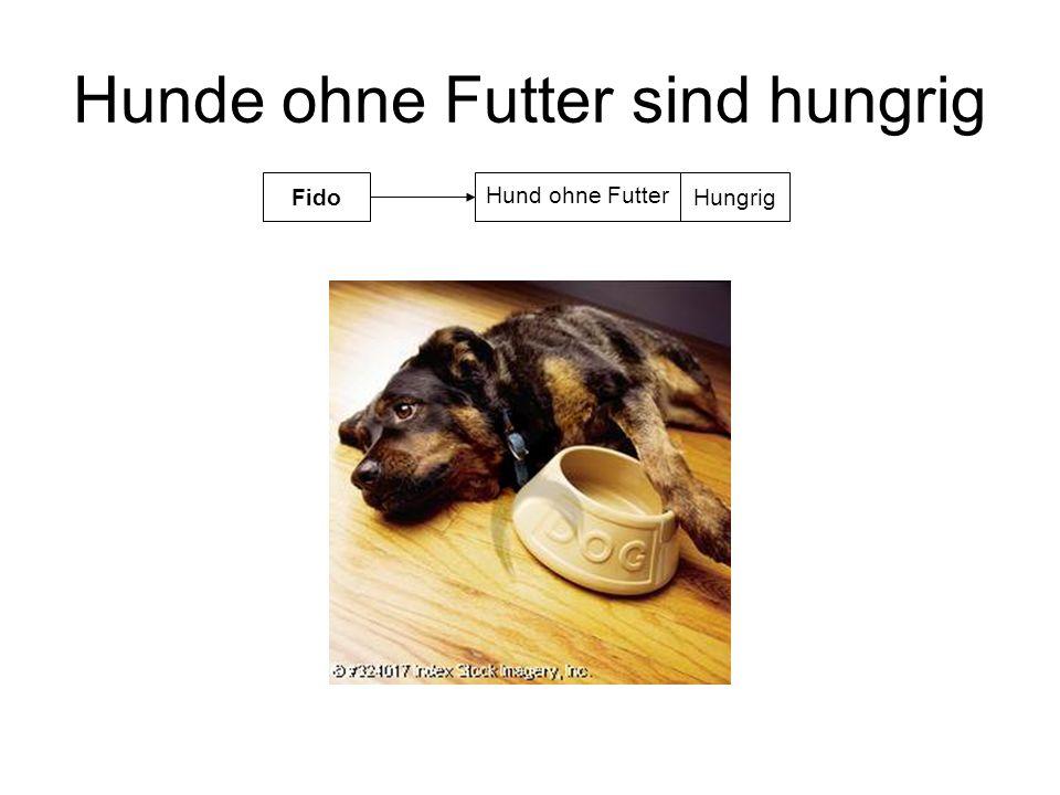 Hunde ohne Futter sind hungrig Hund ohne Futter FidoHungrig