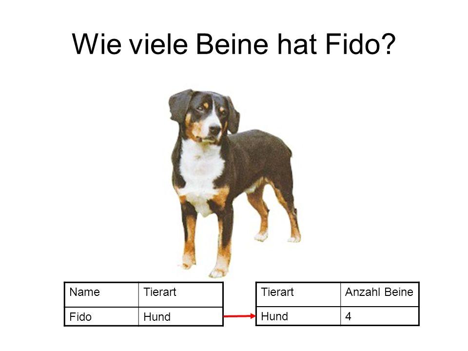 Wie viele Beine hat Fido? NameTierart FidoHund TierartAnzahl Beine Hund4