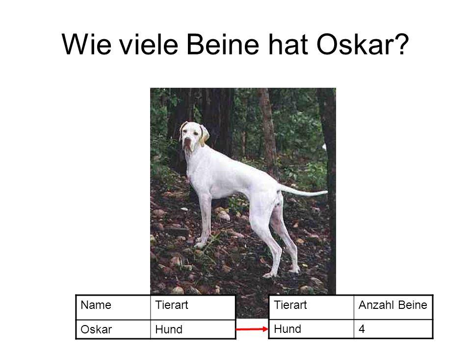 Wie viele Beine hat Oskar? NameTierart OskarHund TierartAnzahl Beine Hund4